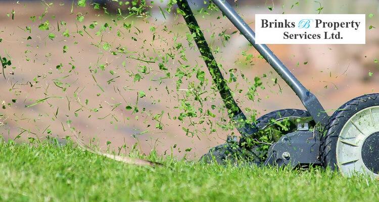 How Short To Cut Grass Before Winter?