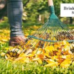 Commercial Property Fall Cleanups - Brinks Property Services
